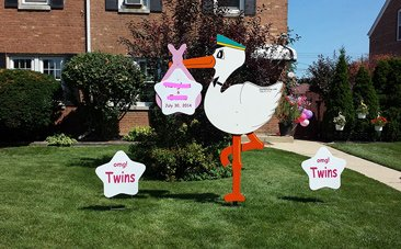 Twins birth announcement only one stork